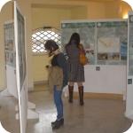 Visitatori della Mostra - 3