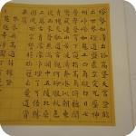 9. Mostra -  Estetica e tecnica: l'arte calligrafica di Sun Xiaoyun a Napoli