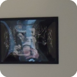"PAN - 3. Mostra fotografica ""Dunwu"" di Sabrina Merolla"