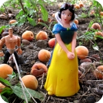 Rosanna Borgo, Biancaneve e il nano tra le albicocche, serie VedoPedo, 2009